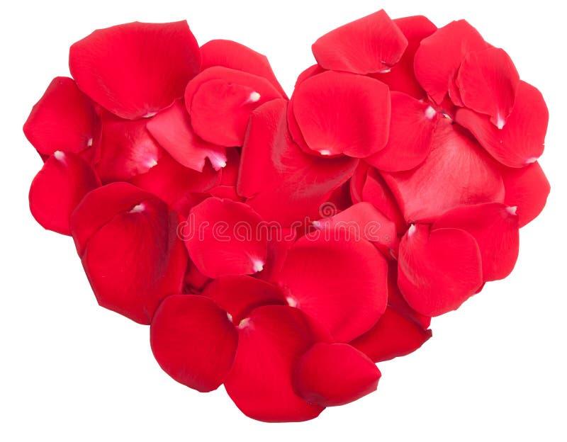 Download Rose petals heart stock photo. Image of romance, beautiful - 22936028