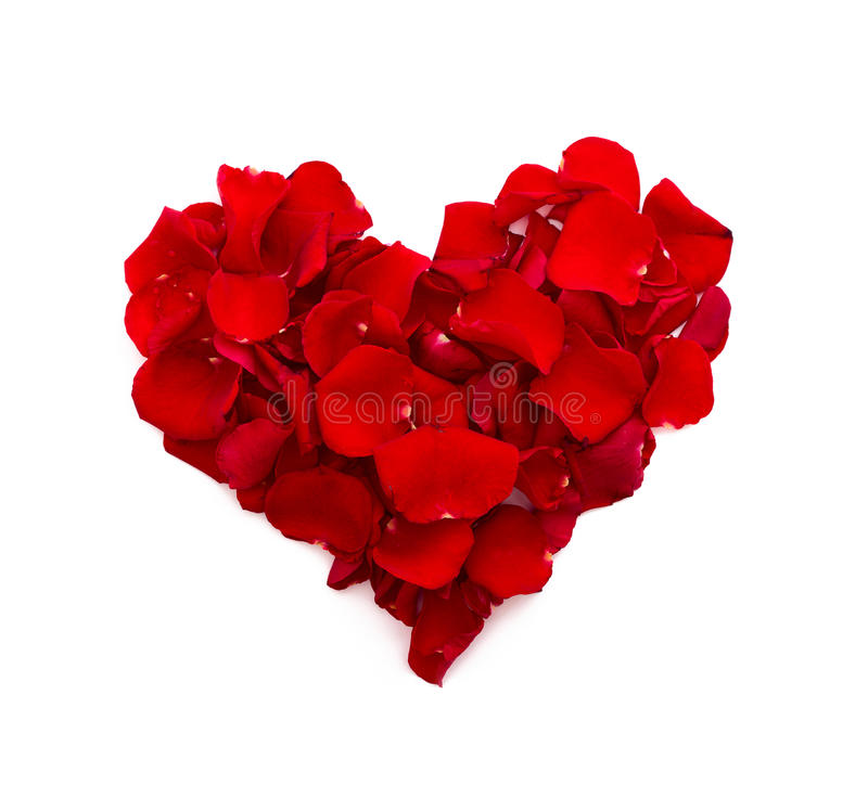 Rose petals in heart shape. Valentine greeting stock images