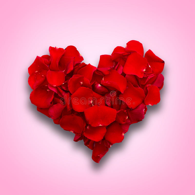Rose petals in heart shape. Valentine greeting royalty free stock photography