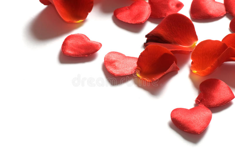 Rose petals and hearts on white background