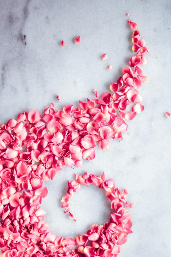 Rose petals on marble stone, floral background stock photos