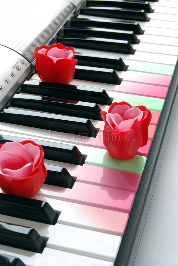 Rose piano pastel stock photography