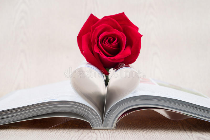 Rose placed on the books page that is bent into a heart shape. On wooden background stock photography