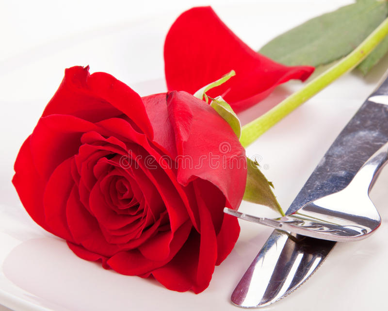 Download Rose in a plate stock image. Image of beautiful, valentine - 22935985