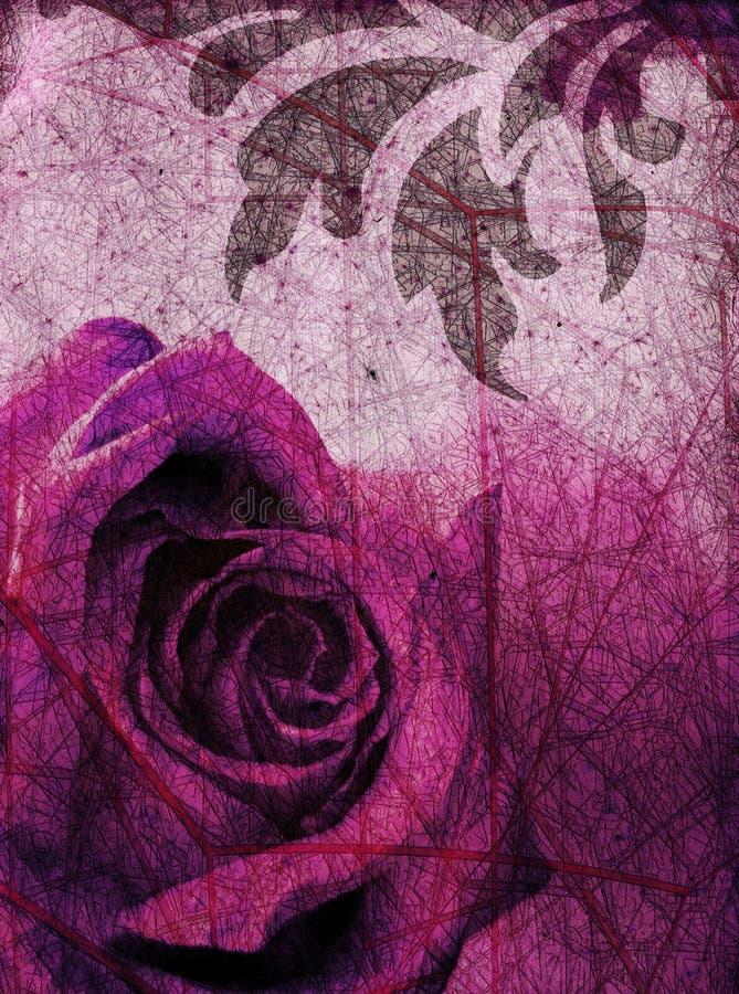 rose purpurowych tło ilustracja wektor