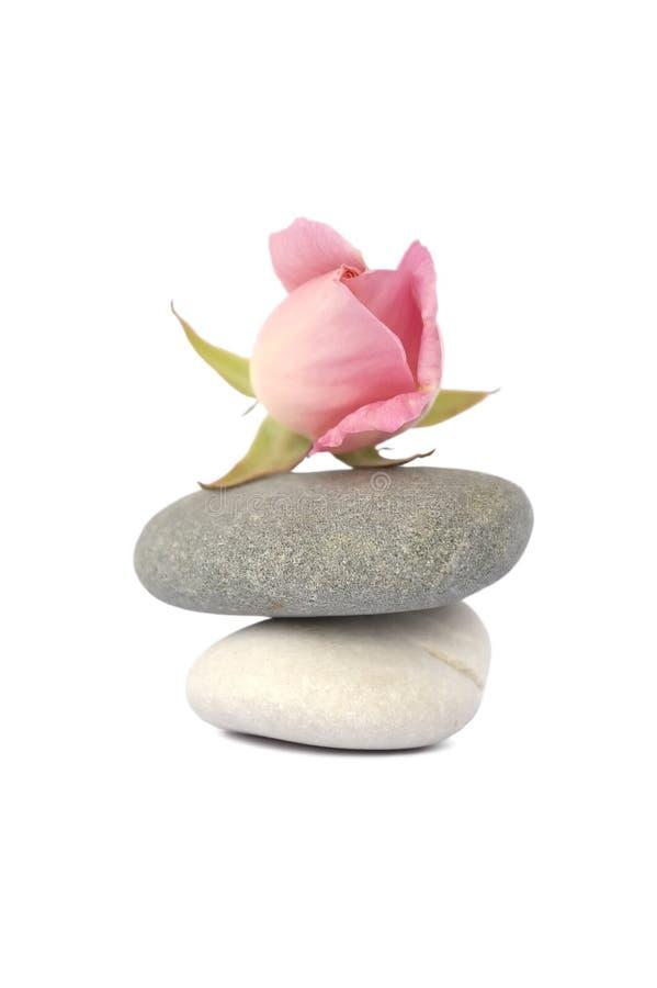 rose równowagi kamienie zdjęcie royalty free
