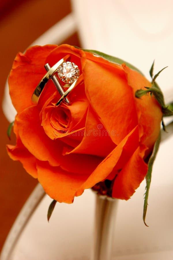 Rose Ring royalty free stock photos