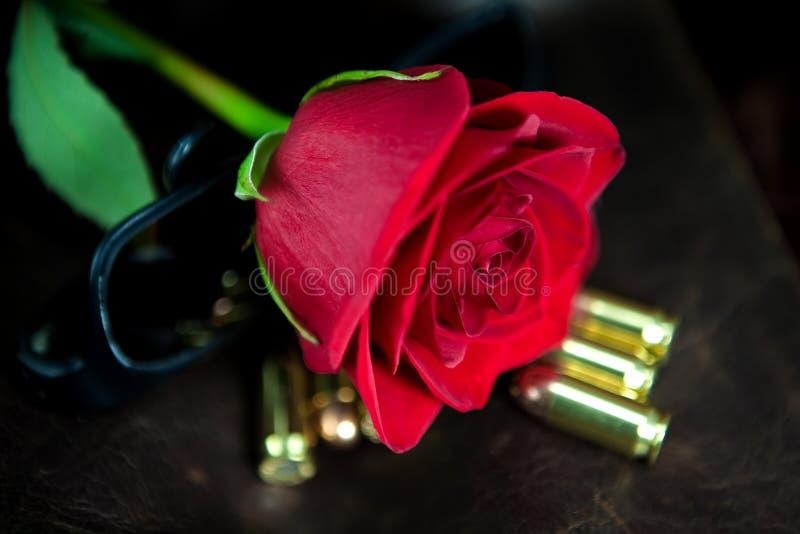 Rose roja con las balas fotos de archivo