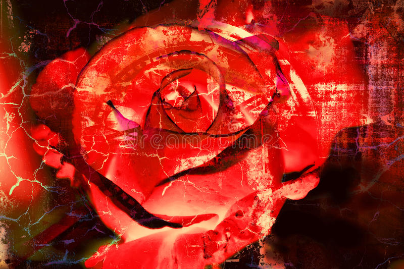 Rose roja - fondo texturizado extracto del Grunge ilustración del vector