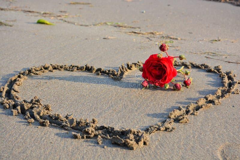 Rose roja y corazón en la playa imagen de archivo
