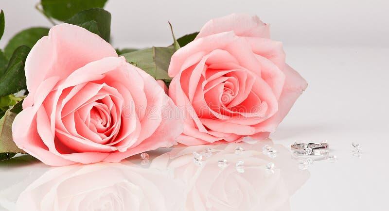 Rose rosa con l'anello di diamante su fondo bianco fotografia stock libera da diritti