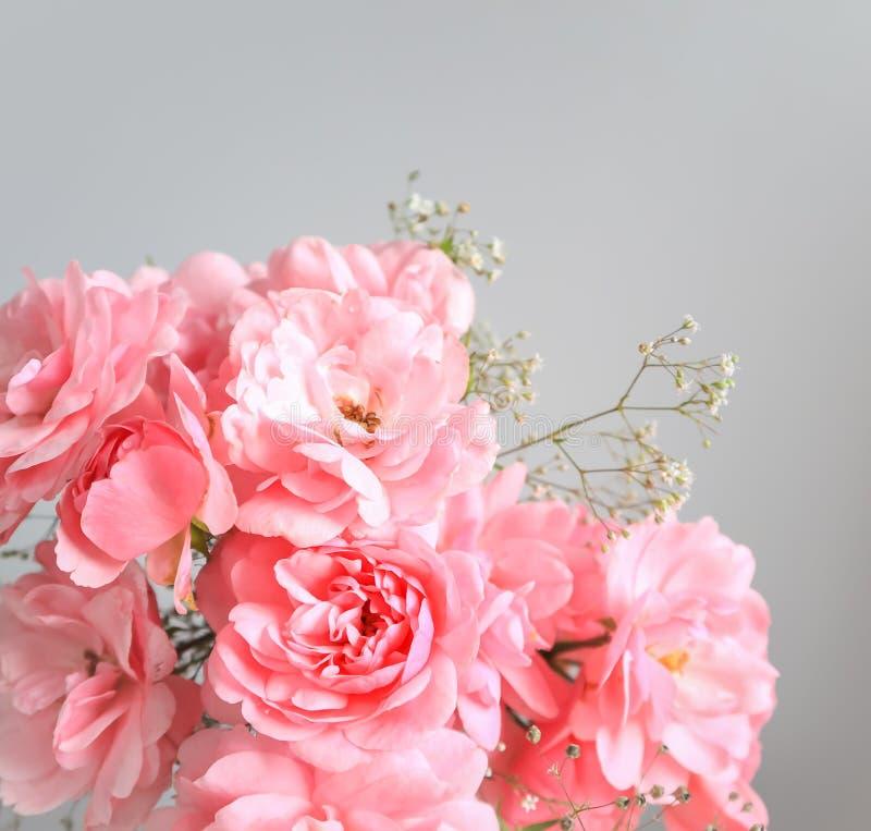 Rose rosa su fondo grigio Perfezioni per le cartoline d'auguri del fondo e gli inviti delle nozze, il compleanno, il San Valentin immagine stock libera da diritti