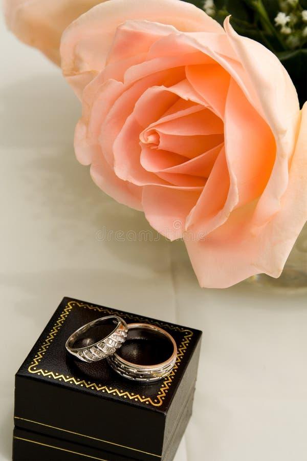 Rose rosada con los anillos de bodas fotos de archivo