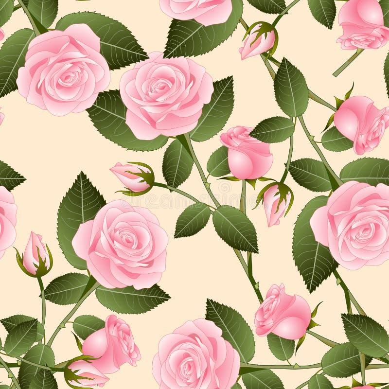 Rose rosada hermosa - Rosa en fondo de marfil beige Día de tarjeta del día de San Valentín Ilustración del vector libre illustration