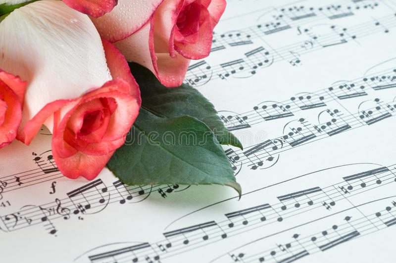 Rose rose et note images stock