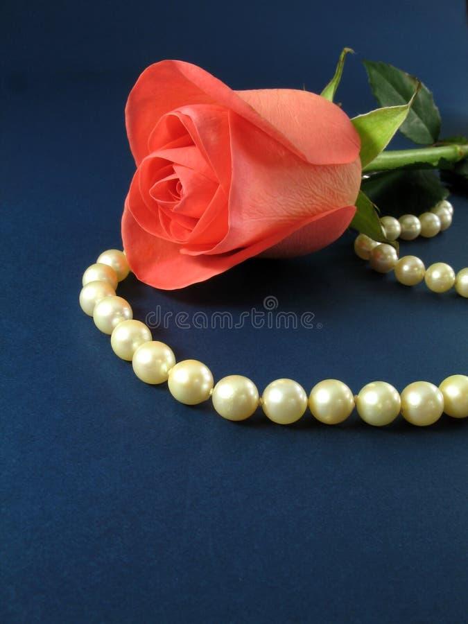 Rose rose et perles image libre de droits