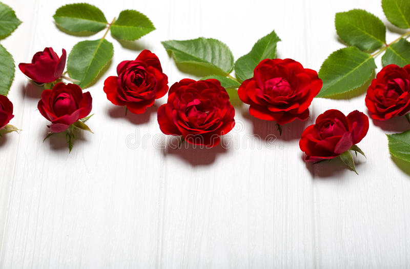 Rose rosse Bei fiori su una tavola deoevian bianca immagini stock