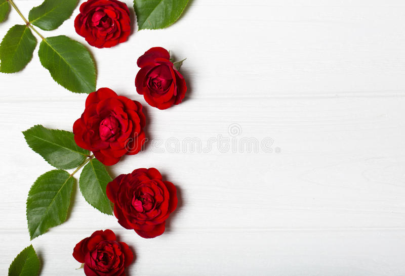 Rose rosse Bei fiori su una tavola deoevian bianca fotografia stock