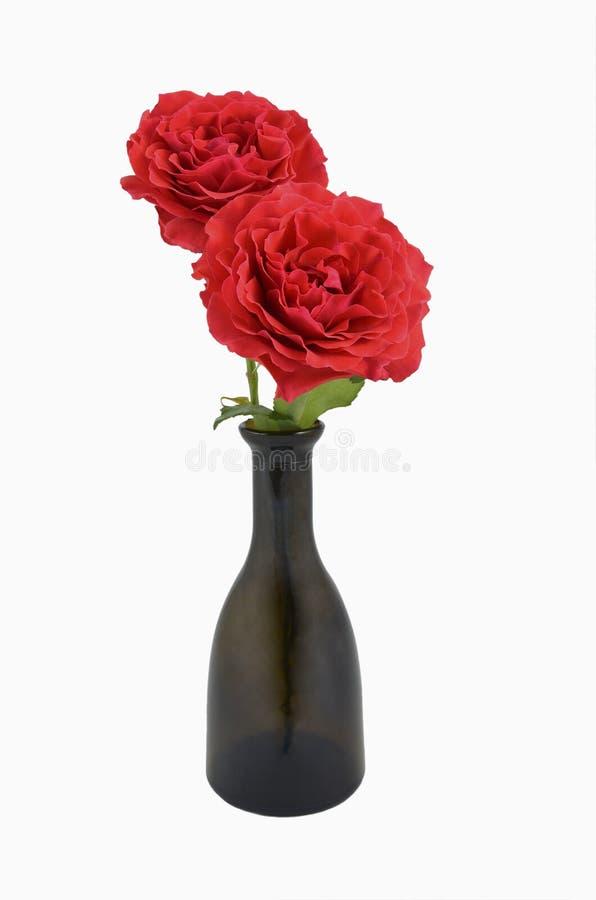 Rose rosse in bottiglia fotografia stock libera da diritti