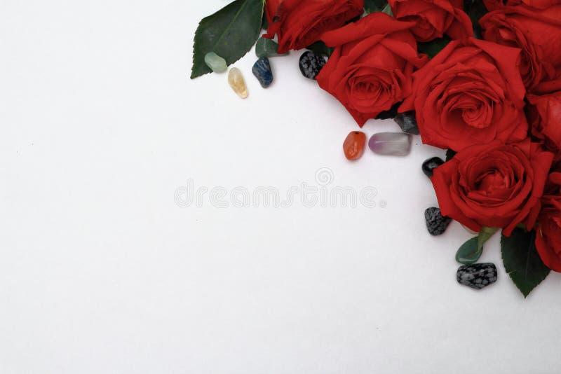 Rose rosse con ciottoli colorati su fondo bianco fotografia stock libera da diritti
