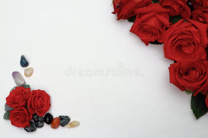 Rose rosse con ciottoli su fondo bianco fotografia stock libera da diritti