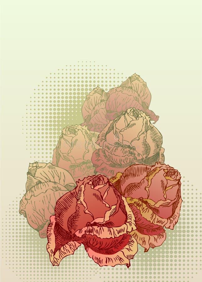 Rose rosse disegnate a mano royalty illustrazione gratis