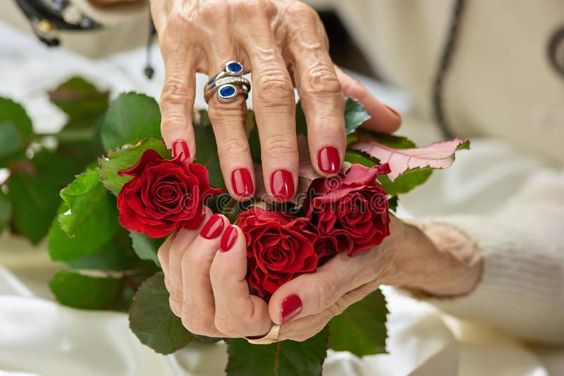 Rose rosse in mani della donna anziana immagini stock