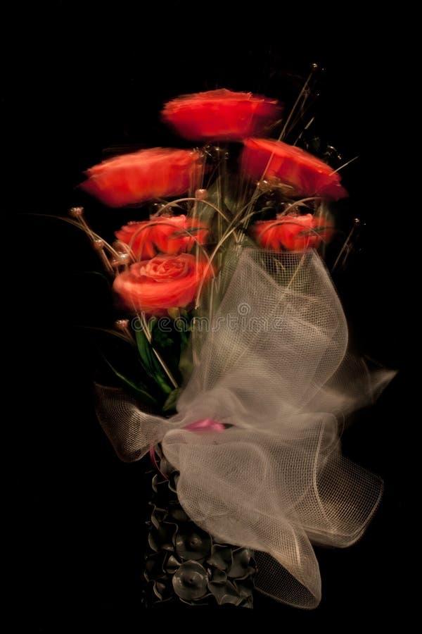 Rose rosse per voi immagini stock libere da diritti