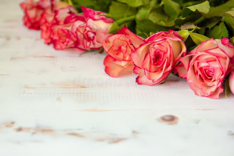 Rose rosse su fondo di legno fotografie stock