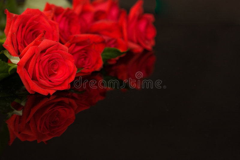 Rose rosse sul nero immagine stock