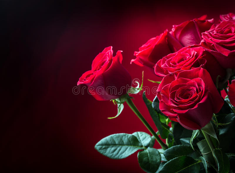 Rose Rote Rosen Blumenstrauß von roten Rosen Einige Rosen auf Granithintergrund Valentinsgruß-Tag, Hochzeitstaghintergrund stockfotografie