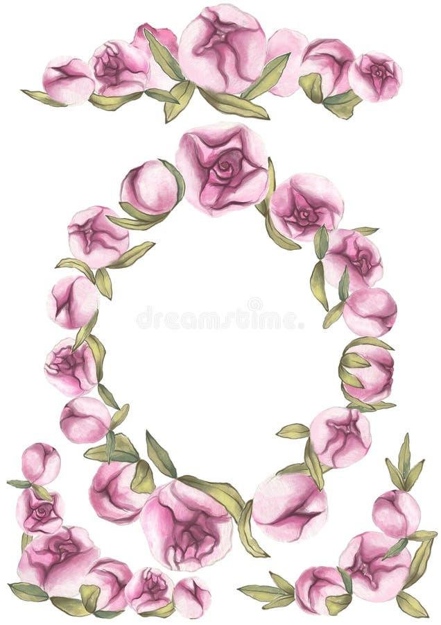 Rose rouge Amour sensible Cadres roses tirés par la main de pivoine de couleur d'eau images libres de droits
