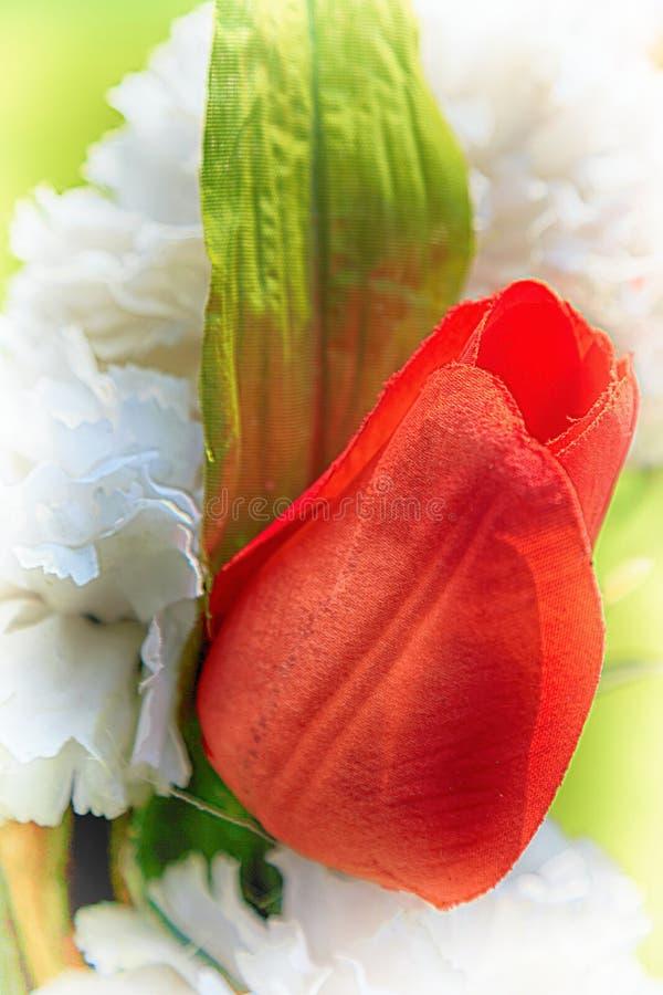 Rose rouge de plastique photographie stock