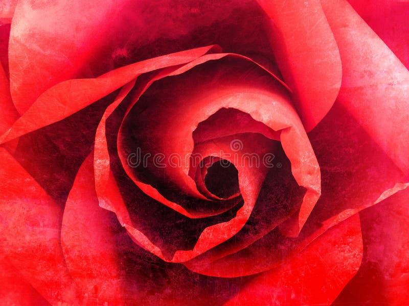 Rose rouge fermée vers le haut du fond abstrait grunge illustration stock