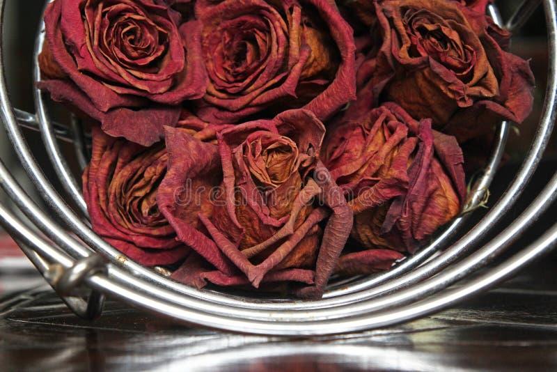 Rose selvatiche secche in un cestello di metallo immagini stock