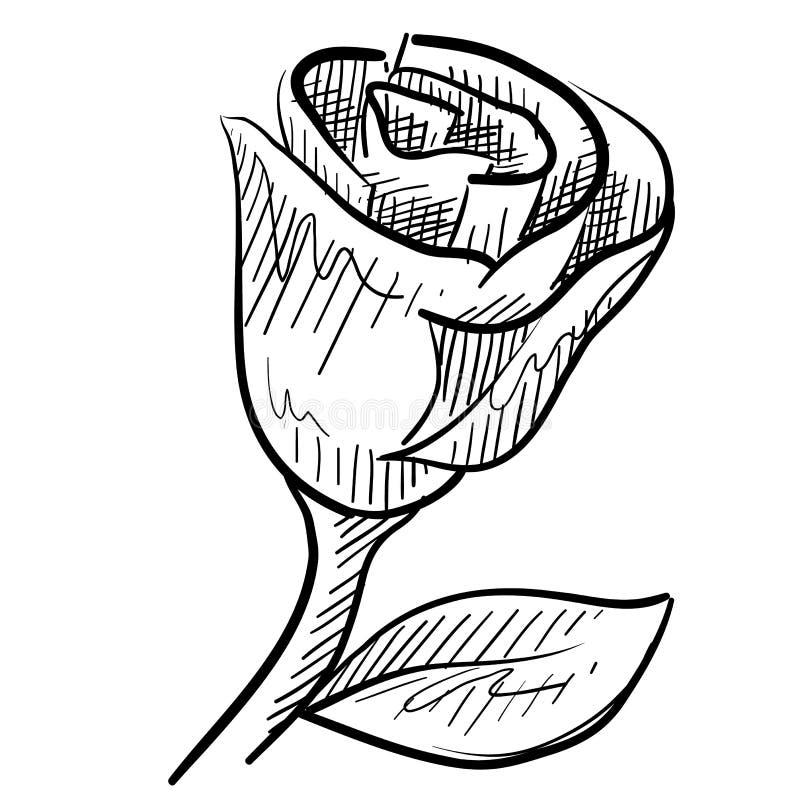 Rose sketch stock illustration