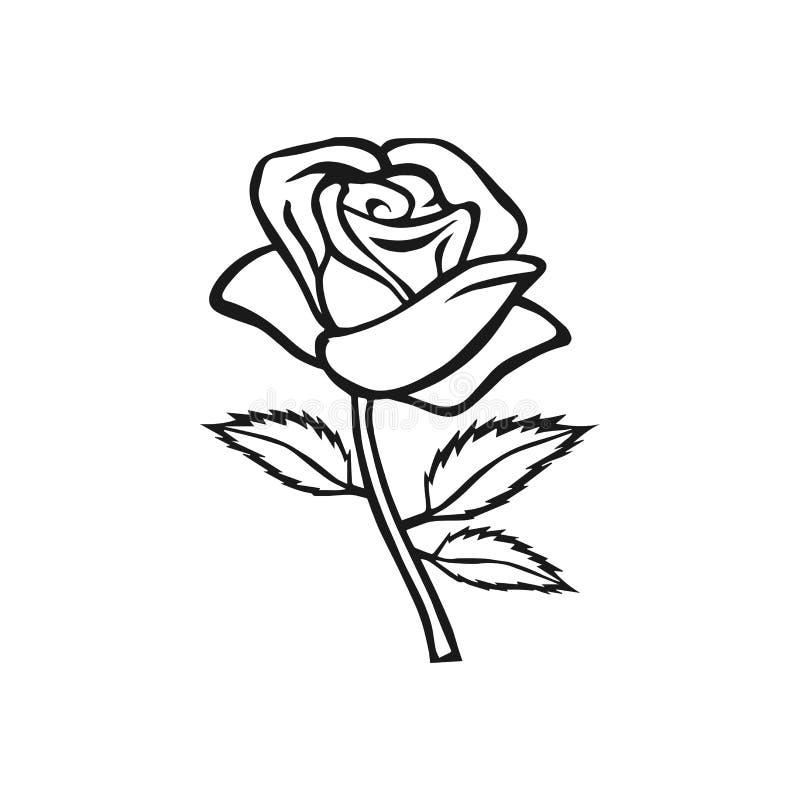 Rose Sketch. Flower Design Element. Vector Illustration. Elegant Floral Outline Design. Gray ...