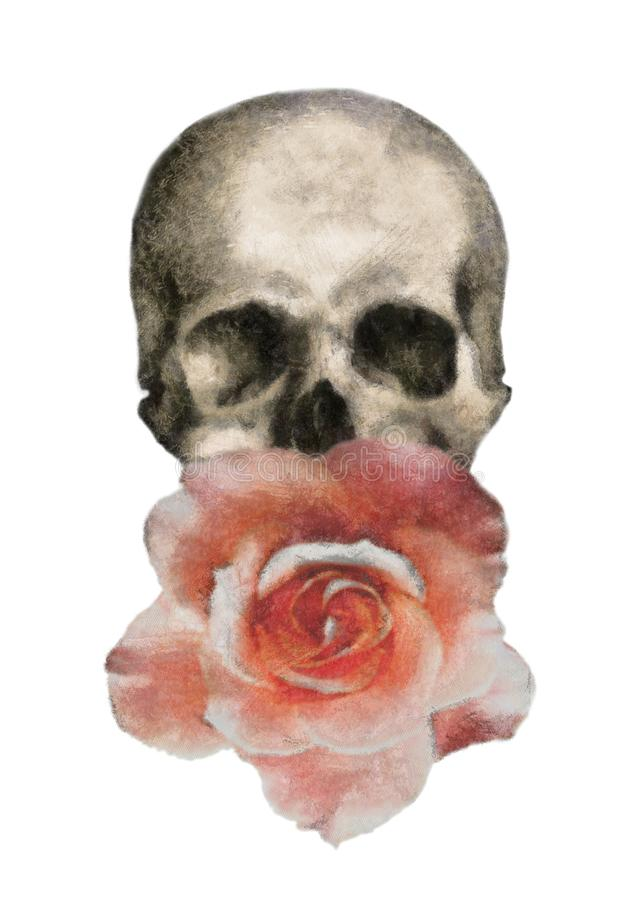 rose and skull t-shirt print, `rock and roll` stock illustration