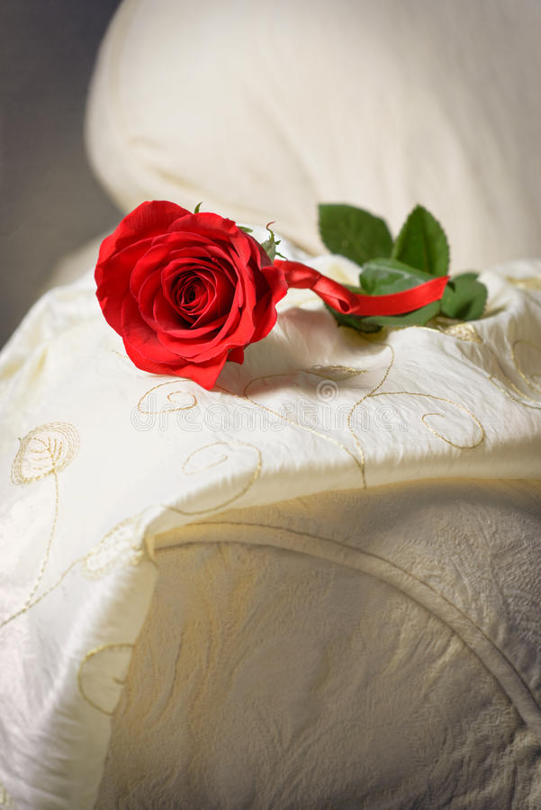 Rose On Sofa. Single red rose lying on the arm of a sofa stock image