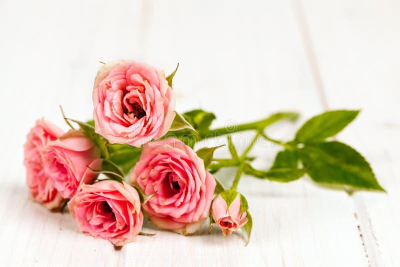 Rose sul fondo di legno bianco delle plance Fiori immagine stock libera da diritti