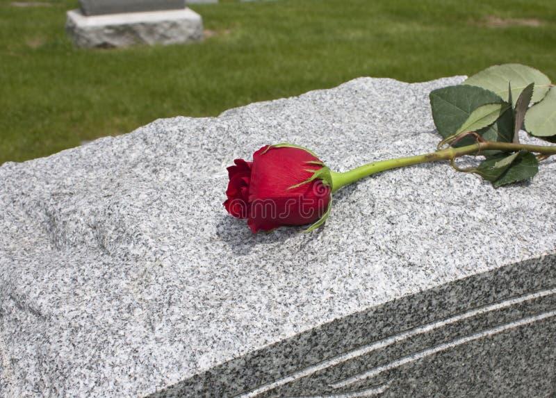Rose sur une tombe image libre de droits