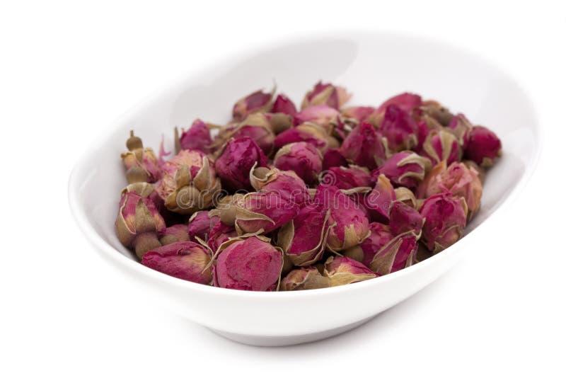 rose tea royaltyfri bild