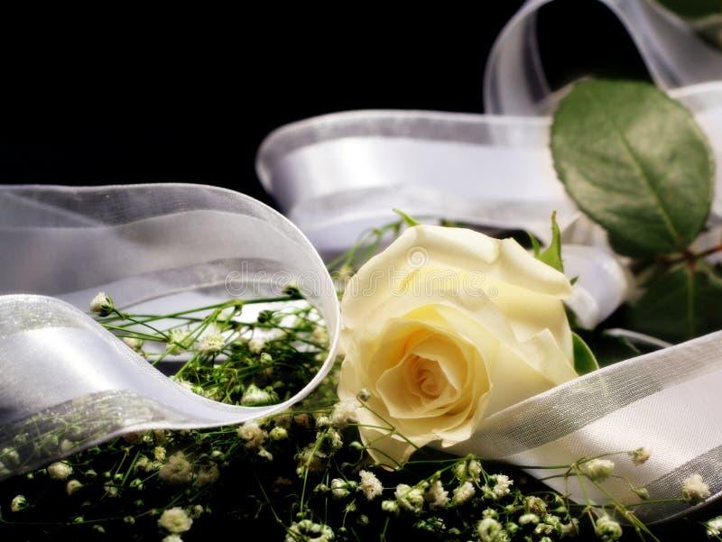 Rose und Farbband stockfotografie
