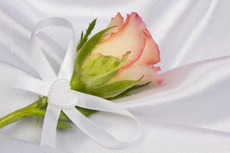 Rose und Hochzeitsringe stockbild