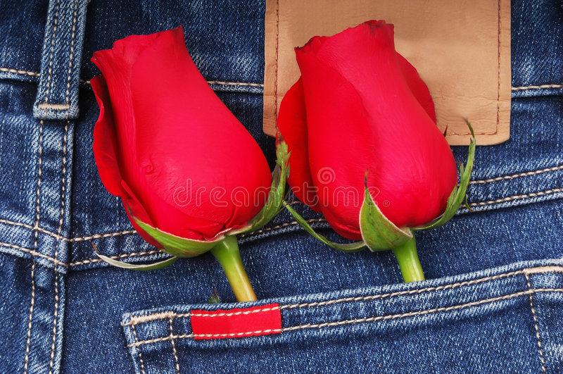 Rose und Jeans stockfotos