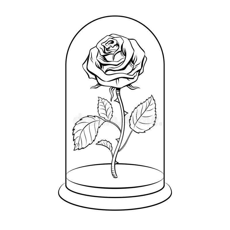 Rose Under Glass Cap Coloring Book Vector Stock Vector ...