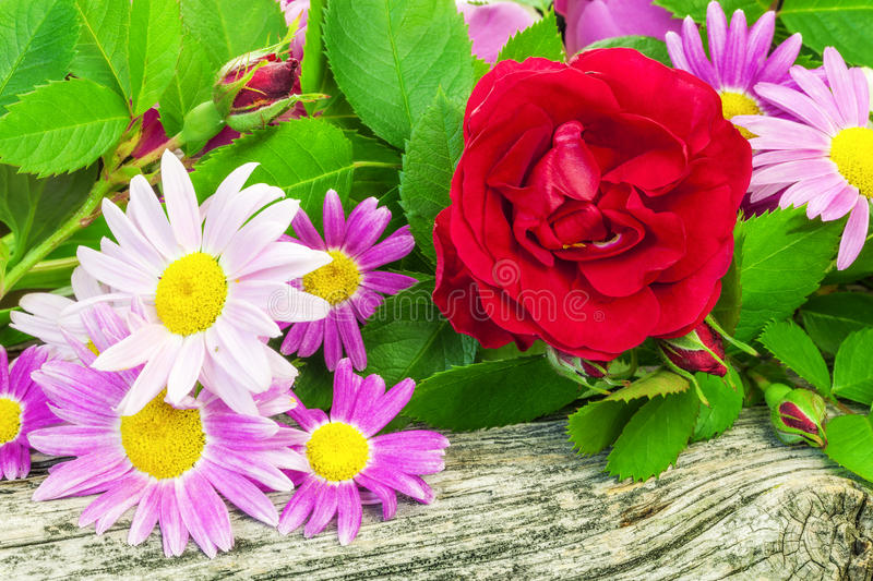 Rose with a variety of flowers. On wooden board stock image