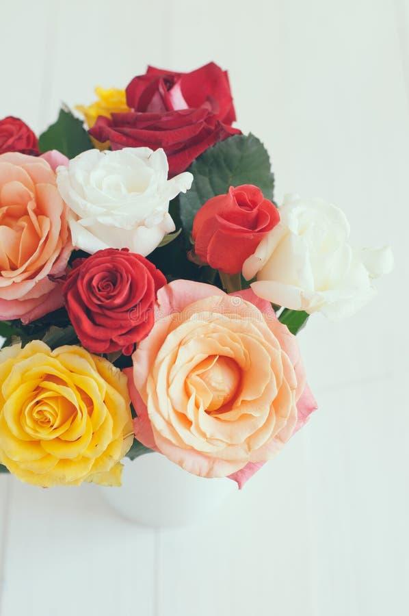 Rose variopinte immagine stock