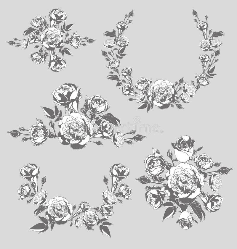 Rose. Vector illustration of roses element vector illustration