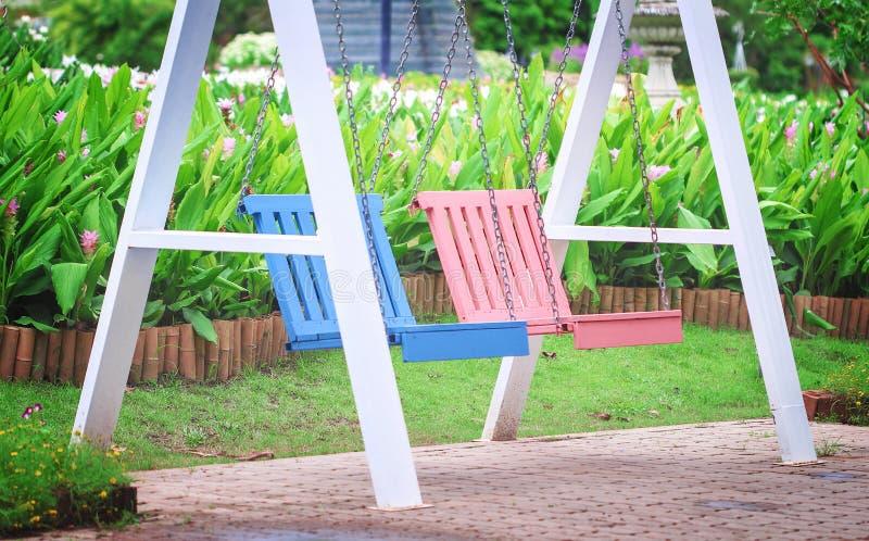 Rose vide coloré et oscillation en bois bleue dans le jardin de fleurs avec le fond de nature photo stock